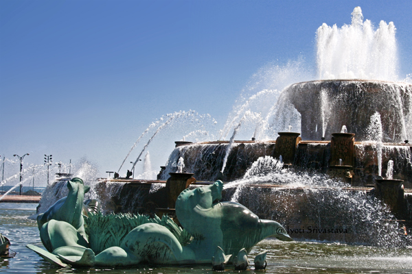 Art Deco Sea Horses /  Buckingham Fountain