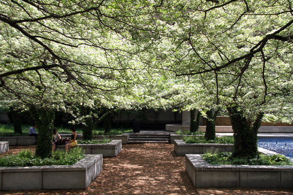 South Garden - by Dan Kiley / Art Institute of Chicago.