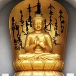 Common Buddhist Mudras