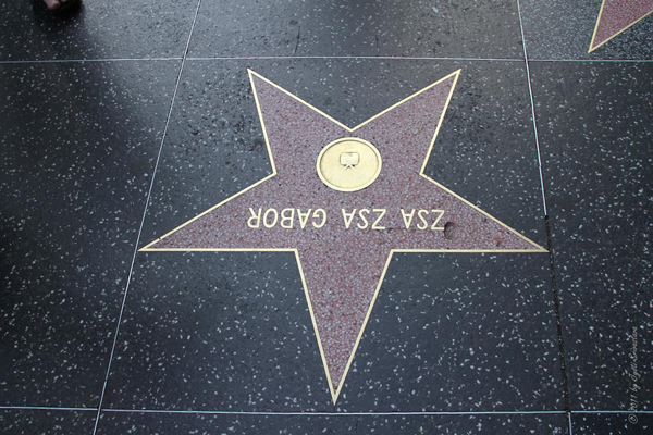 Zsa Zsa Gabor / Hollywood Walk of Fame