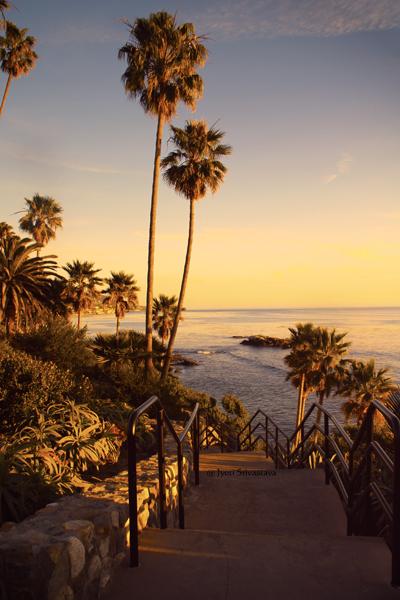 Heisler Park / Laguna Beach, California.