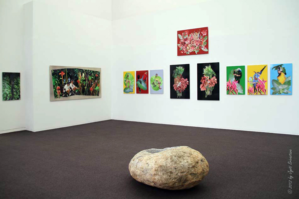 2012 Exhibition: Denise Milan: Mist of the Earth / Paradise