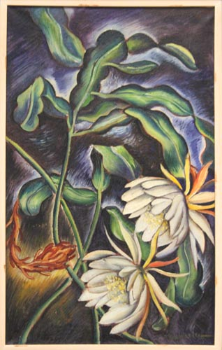 Night Blooming Cereus [1936]