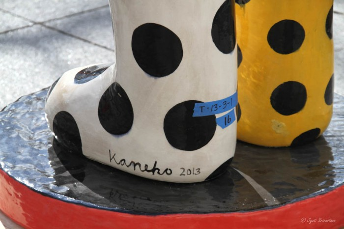 Installation of Tanuki