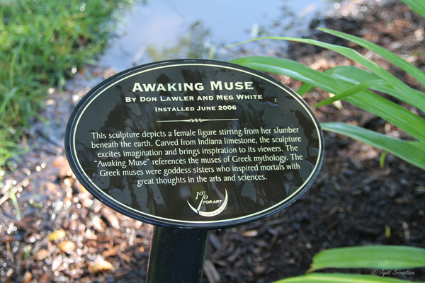 Awaking Muse - by Don Lawler and Meg White
