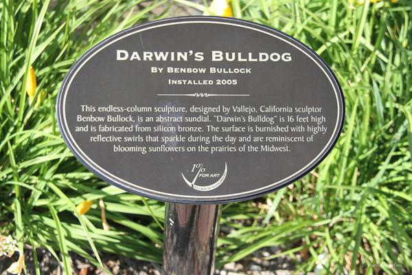 Darwin's Bulldog – by Benbow Bullock