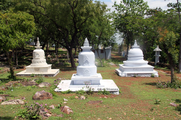 Rajgir: Some more stupas.