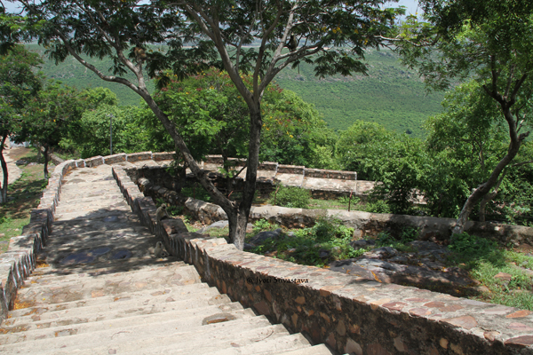 Rajgir: On the hilltop, way to World Peace Pagoda