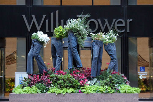 Jeans Planters [Willis Tower]