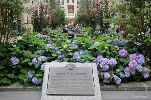 Designated Landmark: New York City