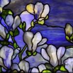 Opalescdent Glass - milky iridescent sheen on magnolias