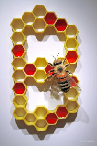 Spelling Bee - by Victoria Fuller