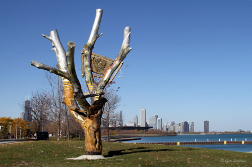 2013 31st Street Harbor Project And Chicago Tree Art