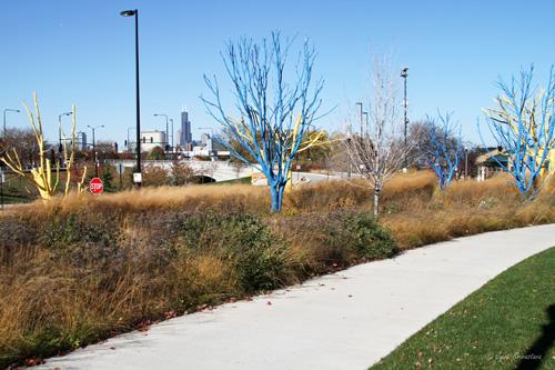 Promenade - Lakefront Trail