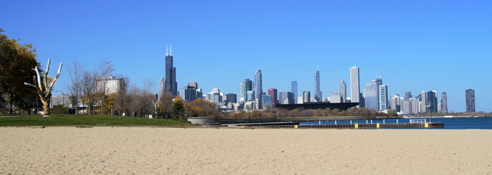 Picture Tree by Christine Perri at 31st Stree, with Chicago Cityscape in the backdrop.