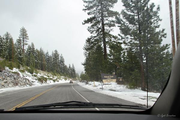 National Forest Lands / Lake Tahoe Basin
