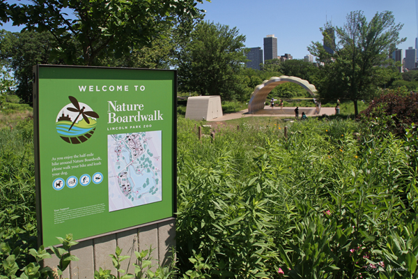 Nature Boardwalk - Lincoln Park Zoo