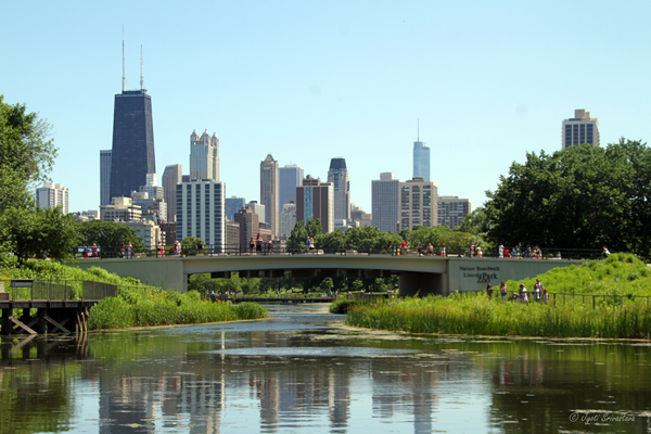 Lester F. Fisher bridge - Nature Boardwalk - Lincoln Park Zoo