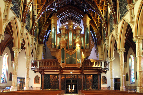Gallery organ / Holy Name Cathedral