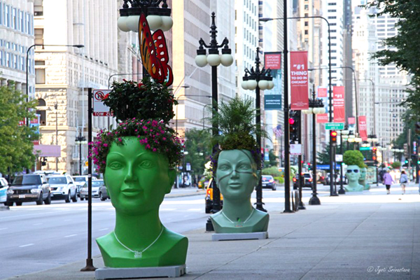 Plant Green Ideas installation [2013] at  Chicago Cultural Mile