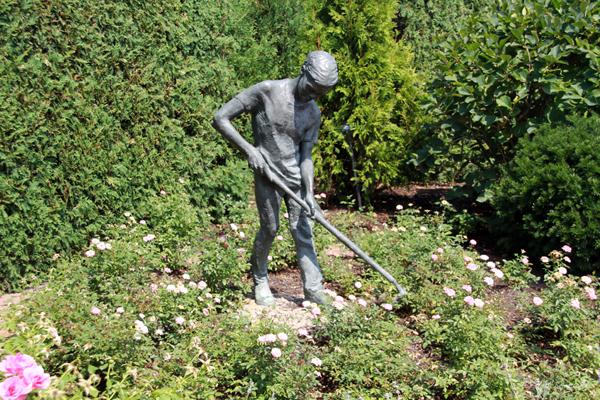 Boy Gardener – by Margot McMahon