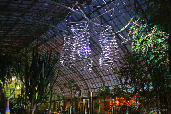 Solaris - Prismatic  / Desert House at Garfield Conservatory