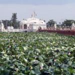Pawapuri Water Temple / Bihar