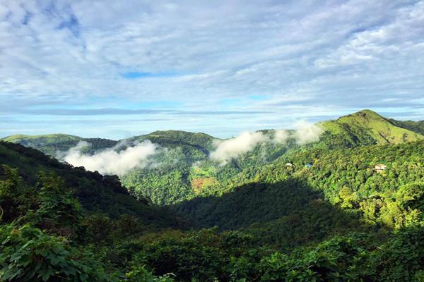Western Ghats, Kerala.