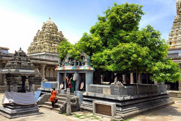 Ekambarshwarar Temple/ Kanchipuram, Tamil Nadu.