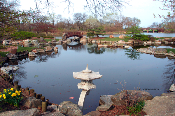 The Garden of the Phoenix, Jackson Park, Chicago.