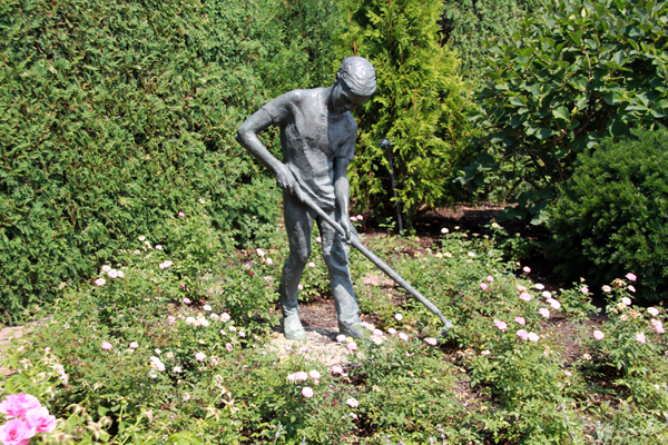 Boy Gardener – by Margot McMahon
