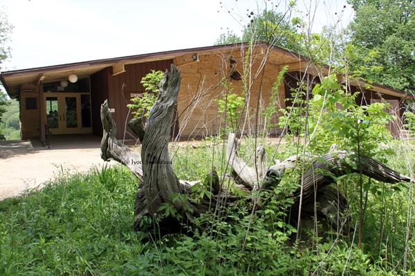 Eagle's Nest Art Colony