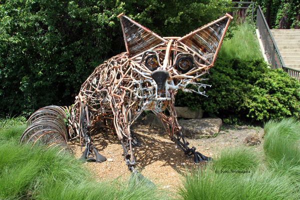 Fox Cycle - by Francis Joseph Gagnepain IV
