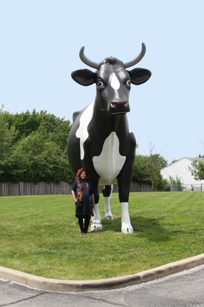Elsie the Cow, Mokena, IL.