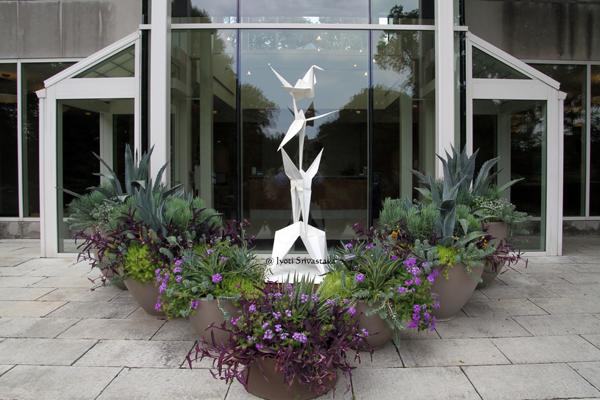 Crane Unfolding / Origami in the Garden / Morten Arboretum