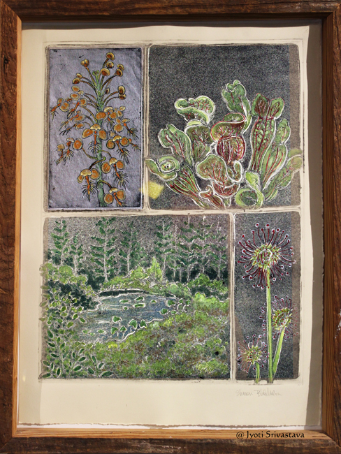 Soils, Seeds, and Sprouts: Tropical and Temperate - Artwork by Sharon Bladholm