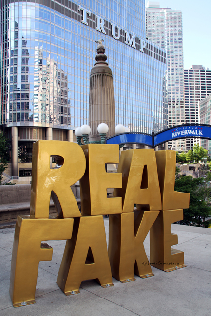 Real Fake - by Scott Reeder