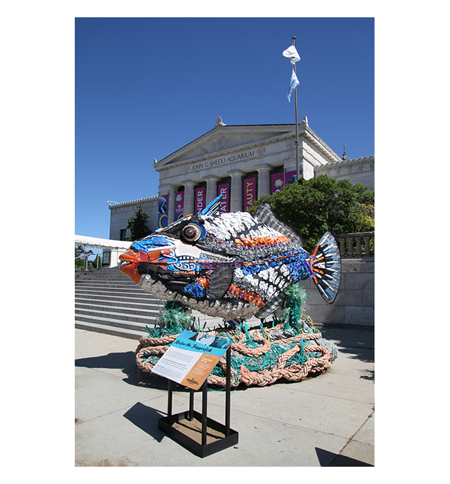 2018 Shedd Aquarium / Washed Ashore